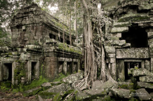 Ta Prohm by Staffan Scherz on Flickr