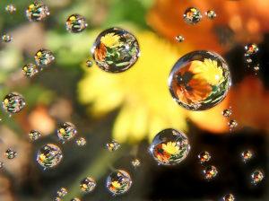 'water drops' by Vanesser III